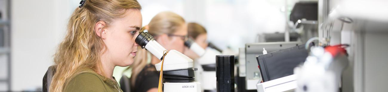 Brütsch Elektronik AG als Arbeitgeber auf talendo